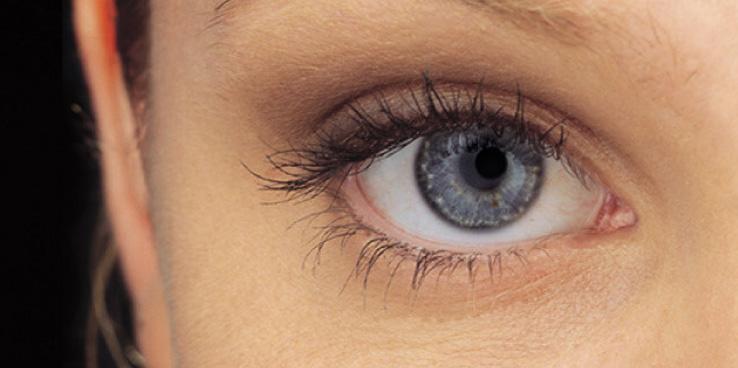 Free eye examination